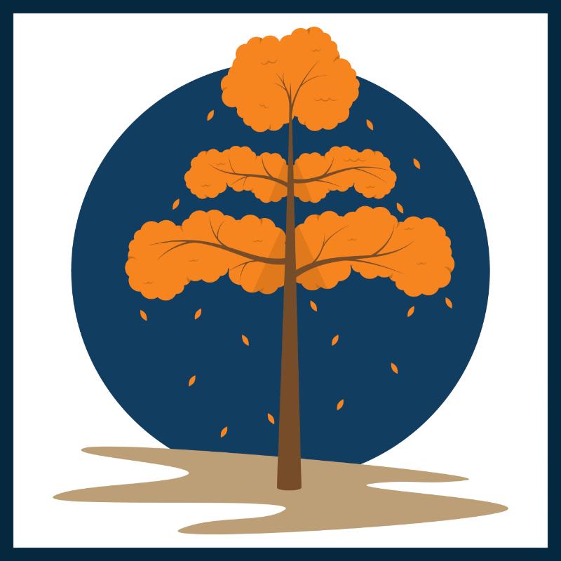 Vector Illustration : Tree during autumn