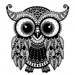 Owl graphic adult coloring book