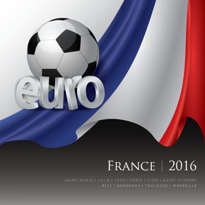 EURO 2016 vector graphic  art